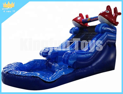 Red dolphin water slide